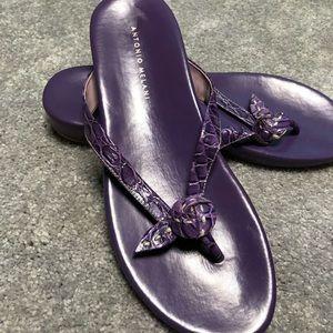Antonio Melani FlipFlop/Sandals (Brand New)